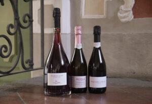 Il Sommelier Magazine Ad Acqui Terme si è parlato del futuro delle bollicine rosa
