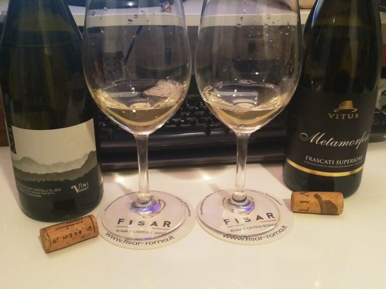 F.I.S.A.R. incontra i Castelli del vino